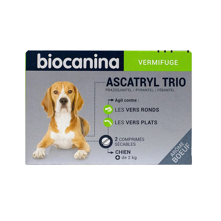 Toxocara canis ascaris vers ronds chien fr for Eliminer les vers