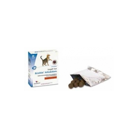 Easypill Resolvin Articulations pour chats - Zootech
