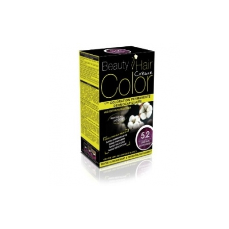 BEAUTY EXPERT CHATAIN CL VIOLET 5.2 - 160ML