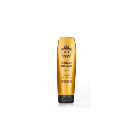 Shampoing Argan Protect Color 250ml - Rich Hair Care