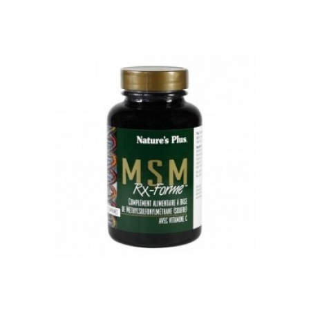 Msm Rx-Forme