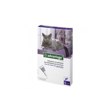 Advantage 80 pour chat - 4 pipettes de 0,8 ml