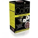 BEAUTY EXPERT COLOR CHATAIN CLAIR CUIVRE 5.4 160ML